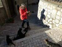 Ursina beim Katzen füttern - die Streuner reissen sich um meine Pizza